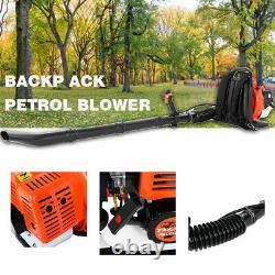 Détails D'environ 65cc 2-stroke Leaf Blower 2,3ch Bac À Gaz Haute Performance