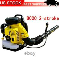 Eb808 Puissant 80cc 2-cycle Motor Gas 850 Cfm 230 Mph Backpack Leaf Blower