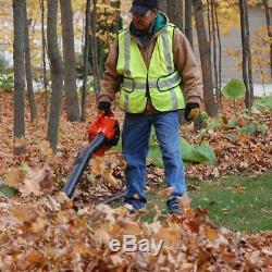 Echo Souffleuse Gaz 2-stroke Cycle Commercial Heavy Duty Herbe Nettoyage De Jardin
